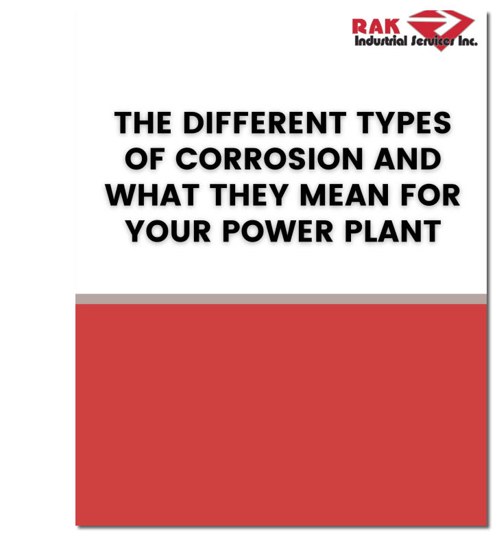 Power Plant eBook
